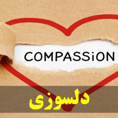 دلسوزی